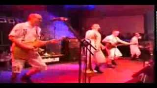 bogus-brothers-youtube