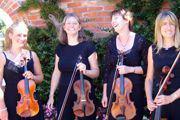 stringendo-string-quartet-thumbnail