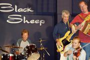 black-sheep-thumbnail