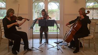 stringendo-trio-youtube